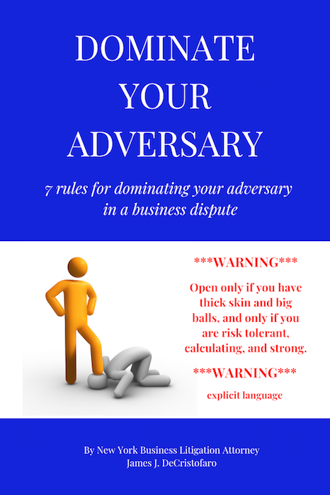 New York Business Law Attorney | Dominate Your Adversary